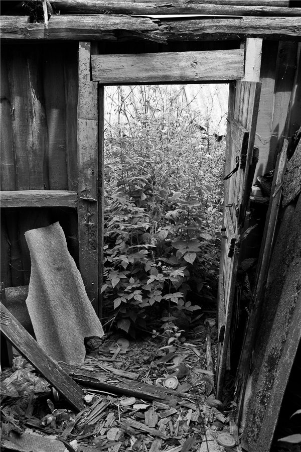 Photo project Forgotten Russia: Forlorn and dying villages - Kryuchki - 04