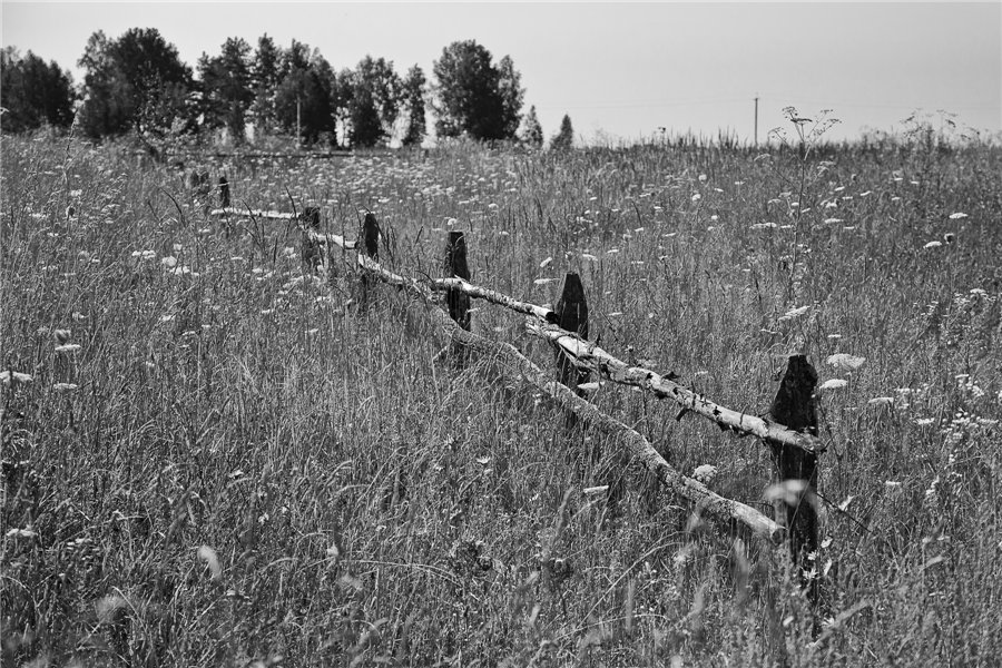 Photo project Forgotten Russia: Forlorn and dying villages - Pozhar - 03