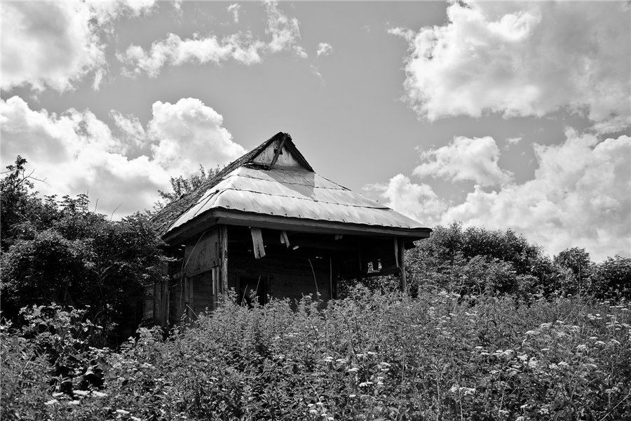 Photo project Forgotten Russia: Forlorn and dying villages - Shapkino - 04