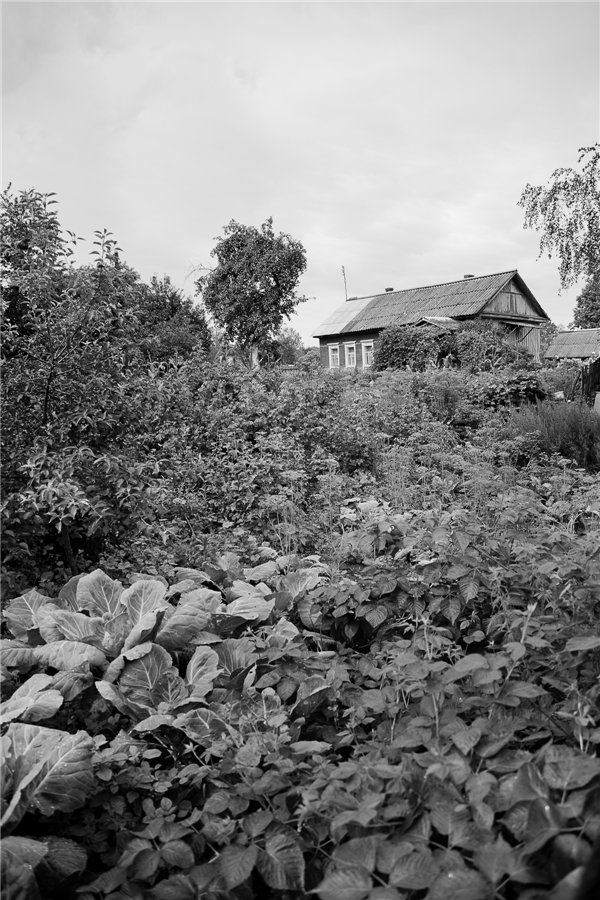 Photo project Forgotten Russia: Forlorn and dying villages - Uprusy - 14