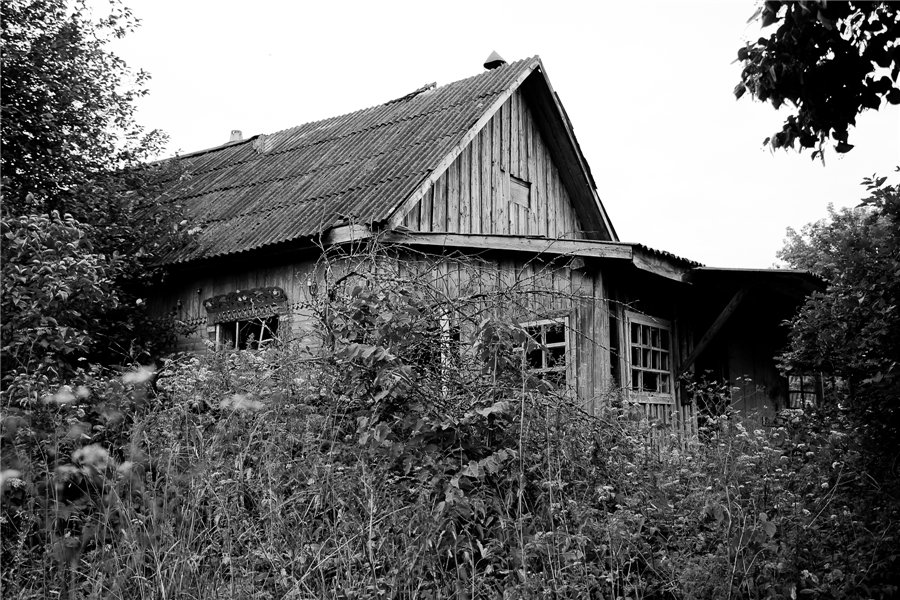 Photo project Forgotten Russia: Forlorn and dying villages - Uprusy - 05