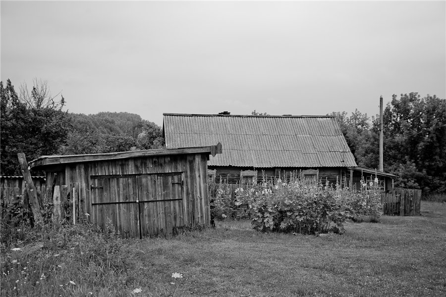 Photo project Forgotten Russia: Forlorn and dying villages - Urukovo - 24
