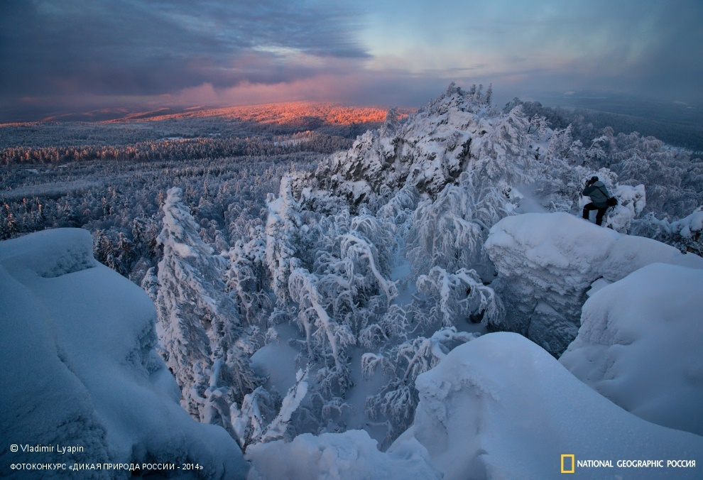 National Geographic: Photo contest Wild Nature of Russia 2014 - Part 1 - 45