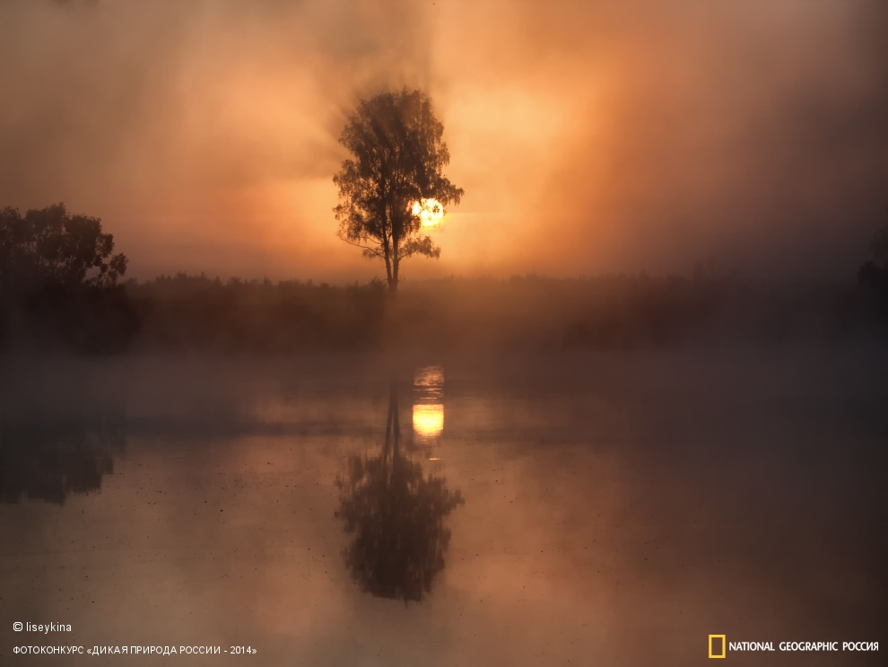 National Geographic: Photo contest Wild Nature of Russia 2014 - Part 1 - 08