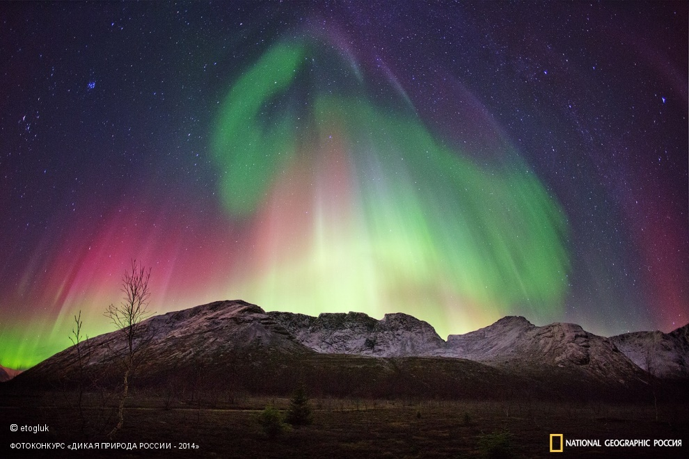 National Geographic: Photo contest Wild Nature of Russia - Part 2 - 55