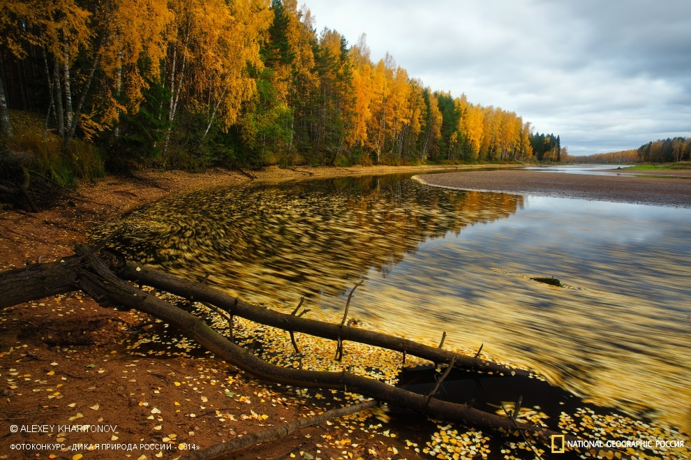 National Geographic: Photo contest Wild Nature of Russia - Part 2 - 06